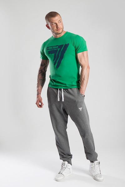T-SHIRT - PLAY HARD 015 - GREEN https://www.trec.pl/media/catalog/product/t/s/ts_p