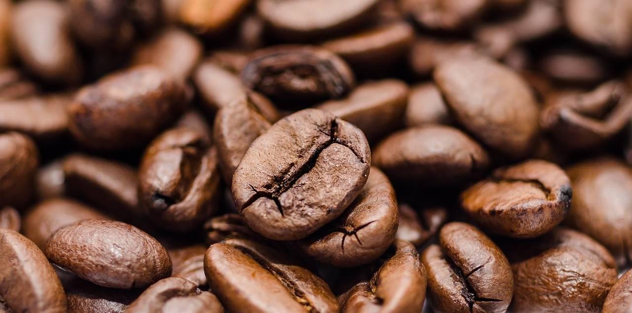 Kofeina w suplementach Trec Nutrition