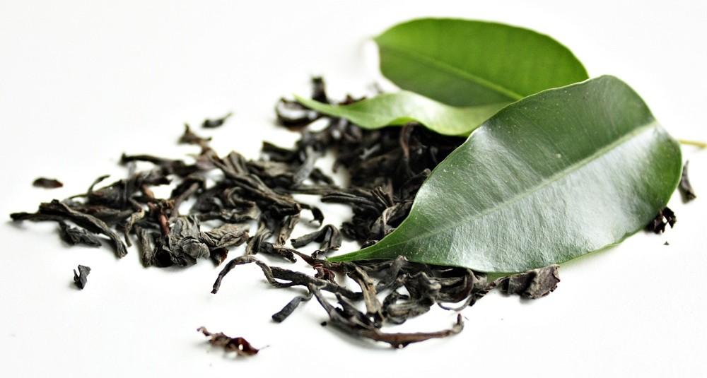 Zielona herbata Składnik spalaczy tłuszczu